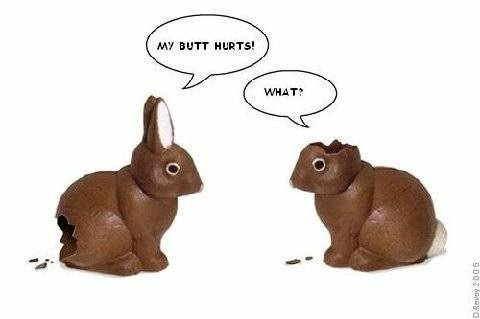 Chocolate Easter Bunnies - Butt and Ears