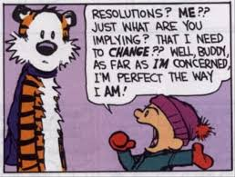 calvin and hobbes resolution perfect