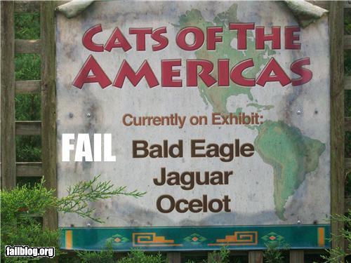 035eb0daos-zoo-fail
