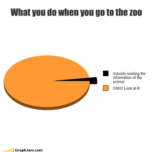 funny-graphs-what-you-do-when-you-go-to-the-zoo