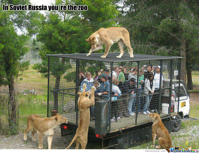 zoo_o_336326