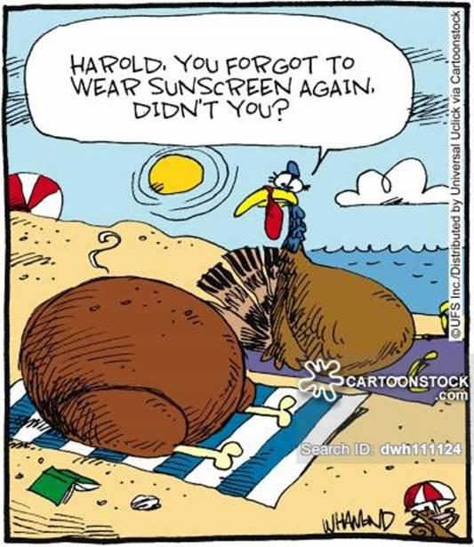 turkey cooked sun beach