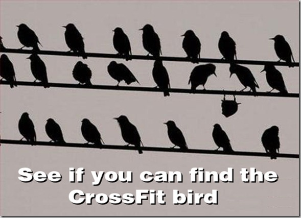 Friday Funny – Crossfit Edition
